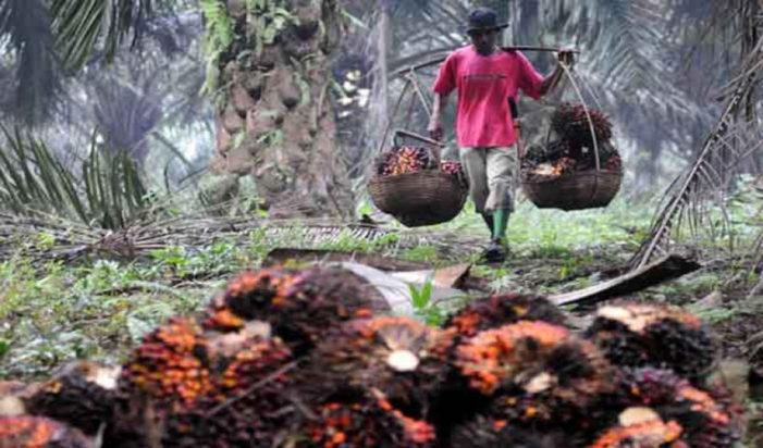 Kades Siantau Raya : Selesaikan Bisnis to Bisnis