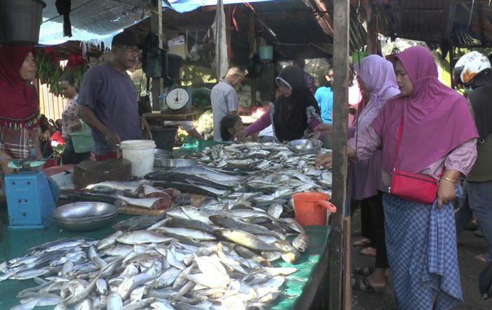 Harga Ikan di Ketapang Naik