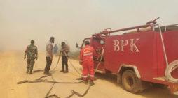 81 Hektar Lahan Desa Pelang Ludes Terbakar