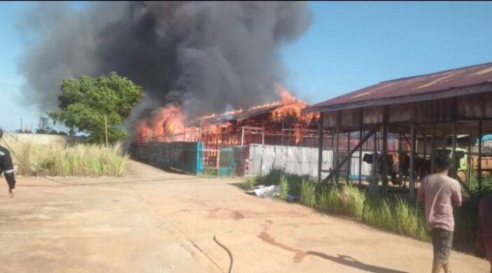 Mess Karyawan PT. WHW Terbakar